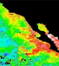 New Pathfinder Version 5.1 Data extends Satellite Derived Climate Data Record (C