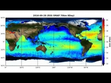 Embedded thumbnail for RSS SMAP Sea Surface Salinity 70km 8-Day Global Animation
